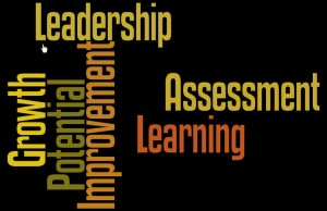 Leadership-Assessment-Growth